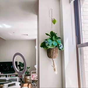 Faux Indoor Hanging Plant